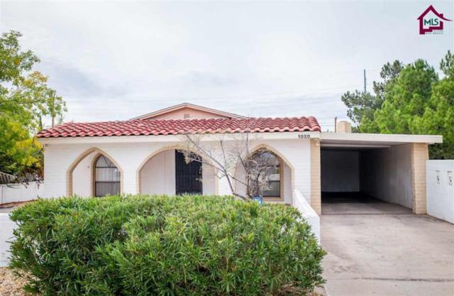 1020 Alamo Street, Las Cruces, NM 88001 (MLS #1703235) :: Steinborn & Associates Real Estate
