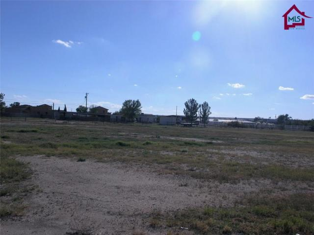 Lot 5D Lot 5D Polk Street, Anthony, NM 88021 (MLS #1703246) :: Steinborn & Associates Real Estate
