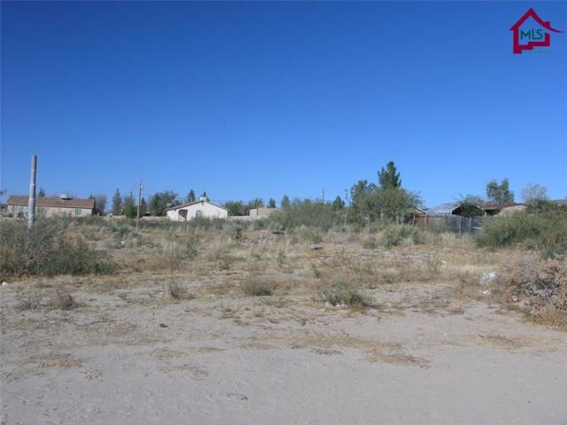 Lot 5C Lot 5C Polk Street, Anthony, NM 88021 (MLS #1703247) :: Steinborn & Associates Real Estate