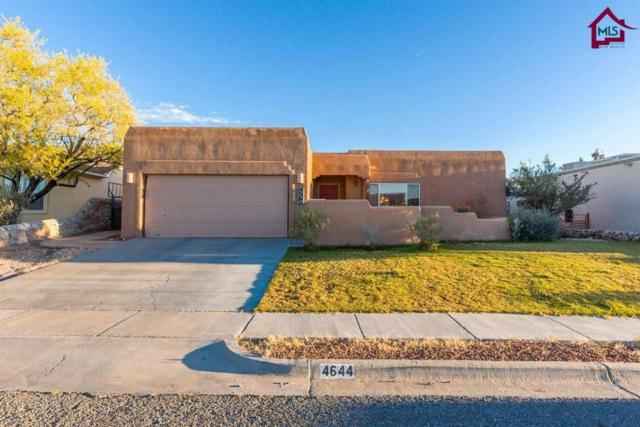 4644 Nogal Canyon Road, Las Cruces, NM 88011 (MLS #1703281) :: Steinborn & Associates Real Estate