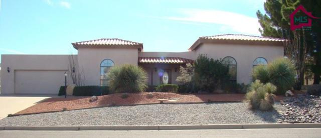 6615 Vista De Oro, Las Cruces, NM 88007 (MLS #1703330) :: Steinborn & Associates Real Estate