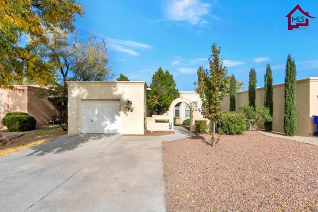 882 Windsor Court, Las Cruces, NM 88005 (MLS #1703353) :: Steinborn & Associates Real Estate
