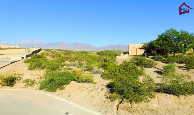 LOT 8A Lot 8A Wind Summit Place, Las Cruces, NM 88011 (MLS #1703359) :: Steinborn & Associates Real Estate