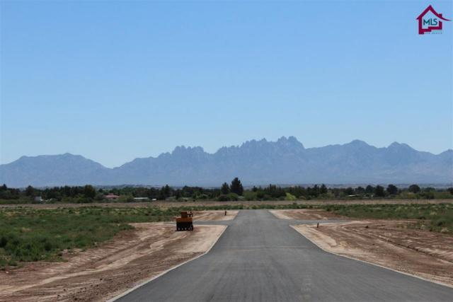 3701 Valle Verde Court, Las Cruces, NM 88007 (MLS #1703441) :: Steinborn & Associates Real Estate