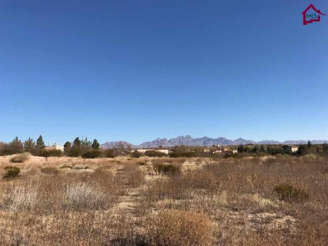 0 Ralls Road, Las Cruces, NM 88012 (MLS #1703475) :: Steinborn & Associates Real Estate