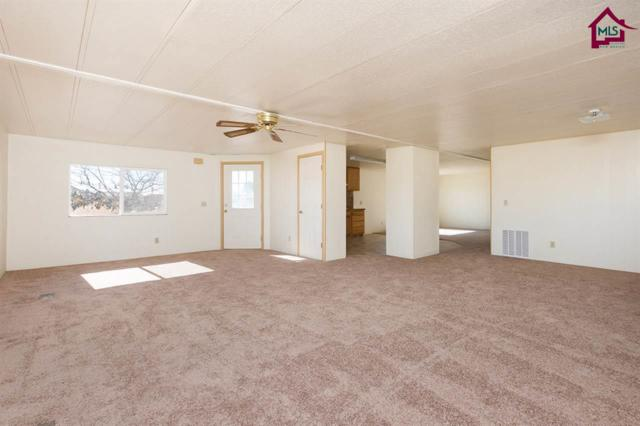 4501 Rancho Grande Ave, Las Cruces, NM 88012 (MLS #1703490) :: Steinborn & Associates Real Estate