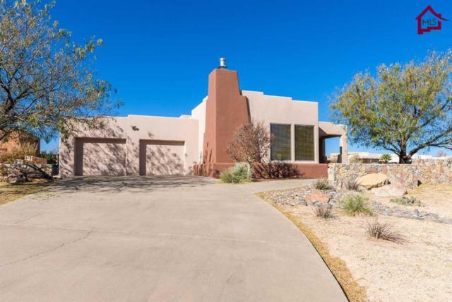 10025 Contana Court, Las Cruces, NM 88007 (MLS #1703494) :: Steinborn & Associates Real Estate