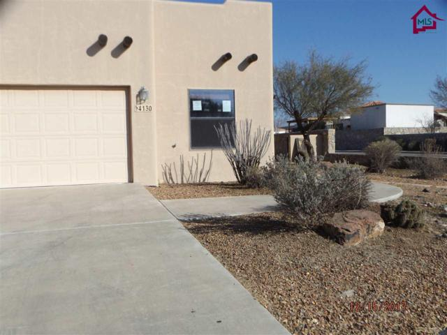 4130 Gila Trail, Las Cruces, NM 88005 (MLS #1703498) :: Steinborn & Associates Real Estate