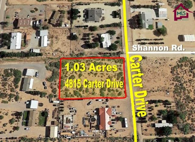 4815 Carter Drive, Las Cruces, NM 88011 (MLS #1703562) :: Steinborn & Associates Real Estate