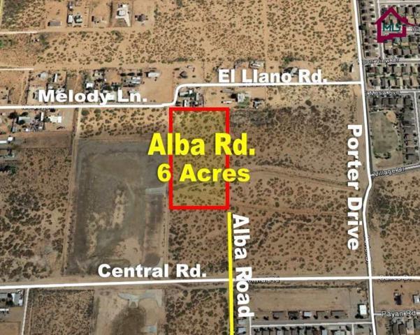 7855 Alba Road, Las Cruces, NM 88012 (MLS #1703563) :: Steinborn & Associates Real Estate