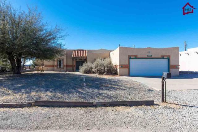 5055 Creek Trail, Las Cruces, NM 88012 (MLS #1703573) :: Steinborn & Associates Real Estate