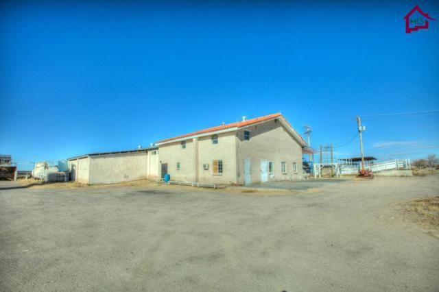 181 Links Road, Anthony, NM 88021 (MLS #1703577) :: Steinborn & Associates Real Estate