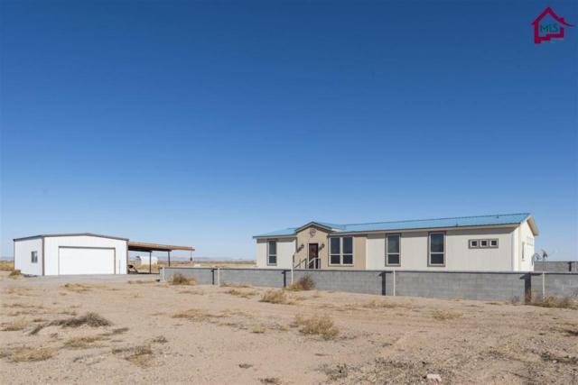 7365 Franklin Road, Deming, NM 88030 (MLS #1703582) :: Steinborn & Associates Real Estate