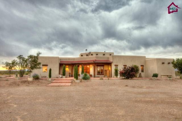 12195 Sierra Azul Road, Deming, NM 88031 (MLS #1800020) :: Steinborn & Associates Real Estate