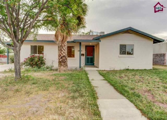 1825 Cruse Avenue, Las Cruces, NM 88005 (MLS #1800021) :: Steinborn & Associates Real Estate