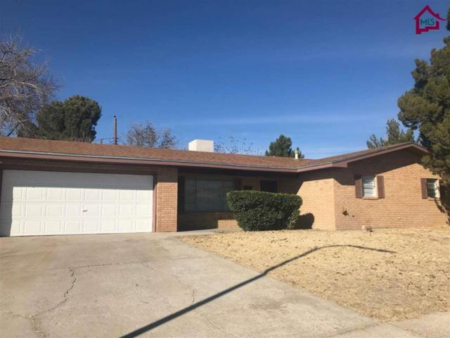 1009 Ferndale Drive, Las Cruces, NM 88005 (MLS #1800024) :: Steinborn & Associates Real Estate