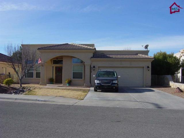 4214 Wildcat Canyon Road, Las Cruces, NM 88011 (MLS #1800037) :: Steinborn & Associates Real Estate