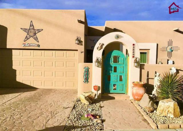 3889 Tayvis Road, Las Cruces, NM 88012 (MLS #1800066) :: Steinborn & Associates Real Estate