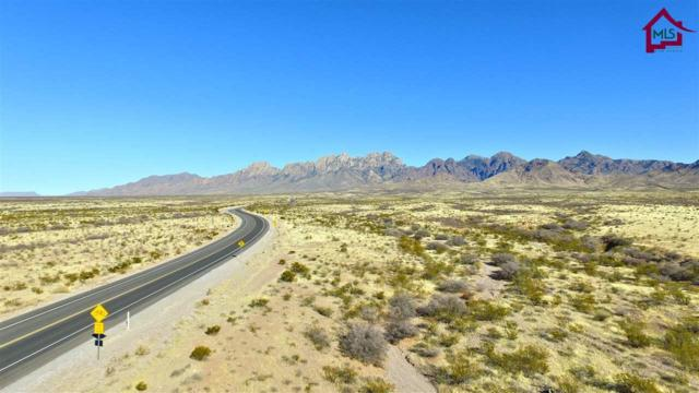 000 Dripping Springs Road, Las Cruces, NM 88011 (MLS #1800126) :: Steinborn & Associates Real Estate