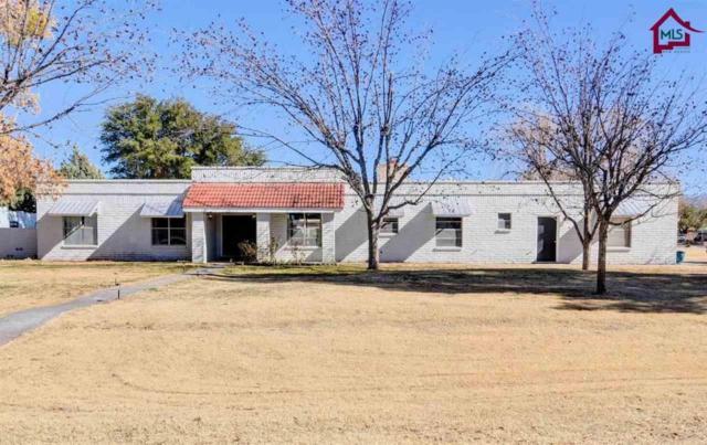 2404 San Andres Drive, Las Cruces, NM 88007 (MLS #1800150) :: Steinborn & Associates Real Estate