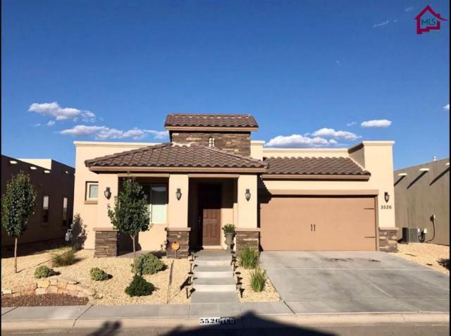 5526 Grove Drive, Sunland Park, NM 88063 (MLS #1800177) :: Steinborn & Associates Real Estate
