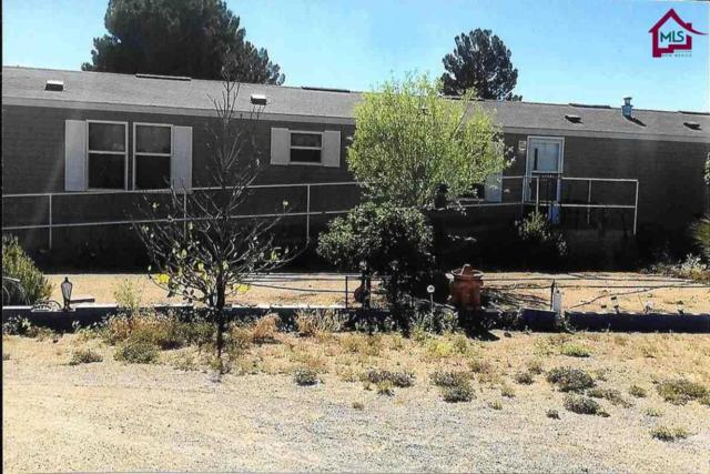 7095 Mac Arthur Road, Las Cruces, NM 88012 (MLS #1800183) :: Steinborn & Associates Real Estate
