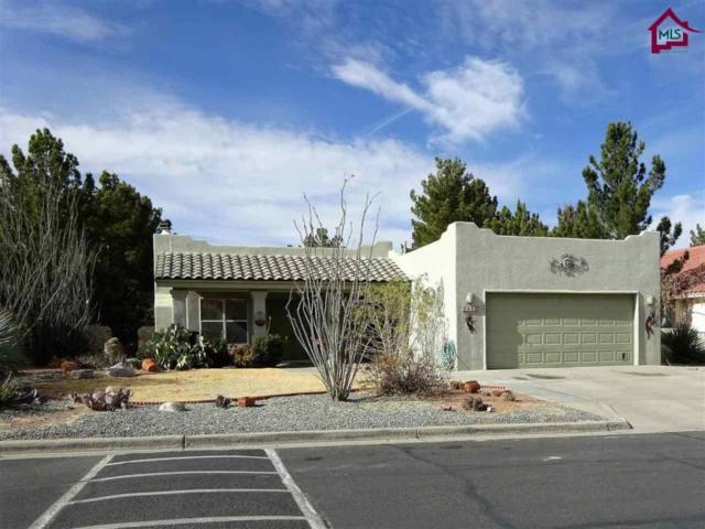 240 Avenida Mirador, Santa Teresa, NM 88008 (MLS #1800198) :: Arising Group Real Estate Associates