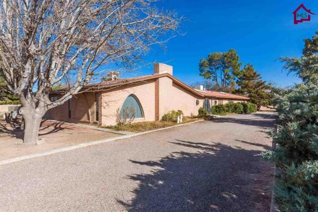2540 San Andres Drive, Las Cruces, NM 88007 (MLS #1800222) :: Steinborn & Associates Real Estate