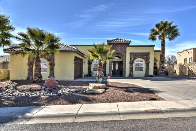 4093 Mojave Drive, Las Cruces, NM 88007 (MLS #1800242) :: Steinborn & Associates Real Estate