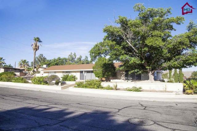 1790 Imperial Ridge, Las Cruces, NM 88011 (MLS #1800254) :: Steinborn & Associates Real Estate