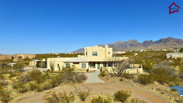 4939 Chippewa Trail, Las Cruces, NM 88011 (MLS #1800264) :: Steinborn & Associates Real Estate