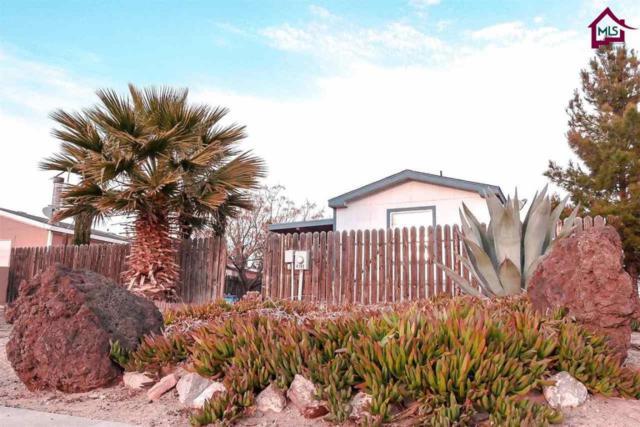 4104 Broadview Road, Las Cruces, NM 88005 (MLS #1800271) :: Steinborn & Associates Real Estate