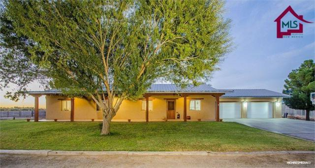 211 Highway 189, Mesilla Park, NM 88047 (MLS #1800284) :: Steinborn & Associates Real Estate