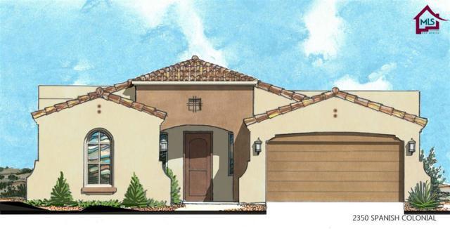 3681 Lunetta Court, Las Cruces, NM 88012 (MLS #1800295) :: Steinborn & Associates Real Estate