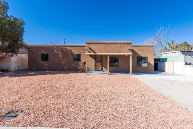 1400 Diana Maura Drive, Las Cruces, NM 88001 (MLS #1800344) :: Steinborn & Associates Real Estate