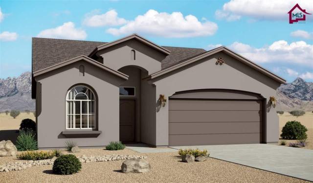 4877 Califa Avenue, Las Cruces, NM 88012 (MLS #1800385) :: Steinborn & Associates Real Estate