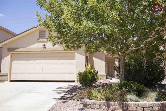 5003 Troybrook Road, Las Cruces, NM 88012 (MLS #1800420) :: Steinborn & Associates Real Estate