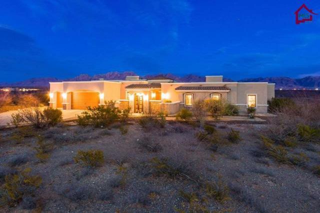 7151 Lake Lucero Loop, Las Cruces, NM 88011 (MLS #1800421) :: Steinborn & Associates Real Estate