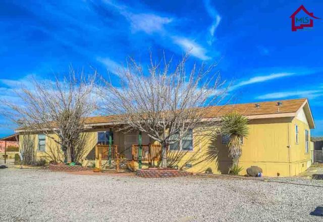 5272 Mangas Trail, Las Cruces, NM 88012 (MLS #1800430) :: Steinborn & Associates Real Estate