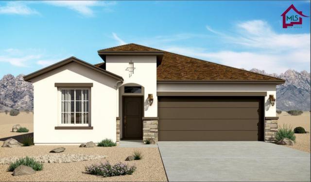 4884 Califa Avenue, Las Cruces, NM 88012 (MLS #1800443) :: Steinborn & Associates Real Estate