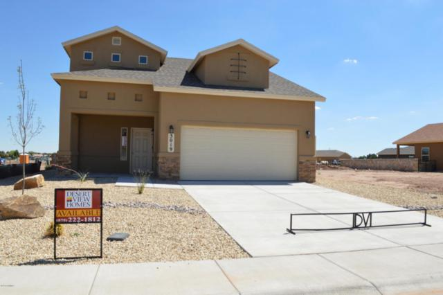 3019 San Elizario Court, Las Cruces, NM 88007 (MLS #1805414) :: Steinborn & Associates Real Estate