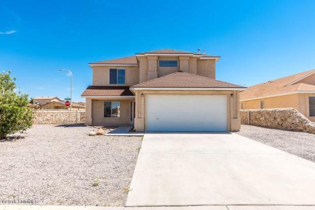 4616 Pyramid Peak Drive, Las Cruces, NM 88012 (MLS #1805621) :: Steinborn & Associates Real Estate