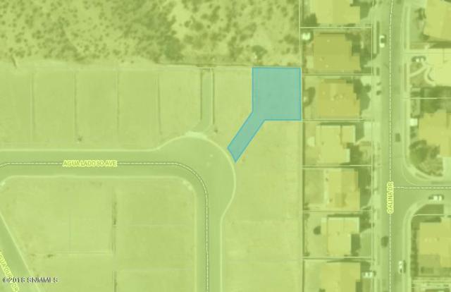 3087 Agua Ladoso Avenue, Las Cruces, NM 88012 (MLS #1805649) :: Steinborn & Associates Real Estate