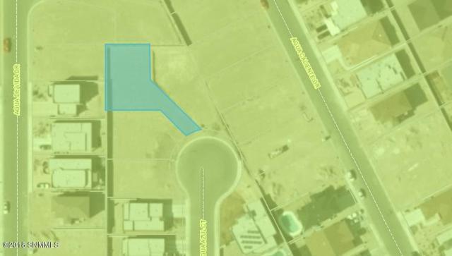 3923 Agua Azul Court, Las Cruces, NM 88012 (MLS #1805657) :: Steinborn & Associates Real Estate
