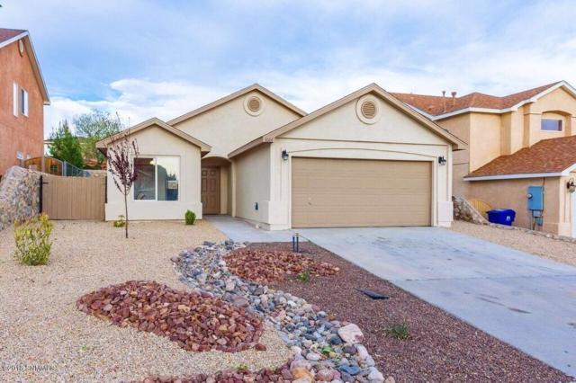4664 Arabela Drive, Las Cruces, NM 88012 (MLS #1805734) :: Steinborn & Associates Real Estate