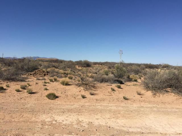 000 Hueco Street, Chaparral, NM 88081 (MLS #1805770) :: Steinborn & Associates Real Estate