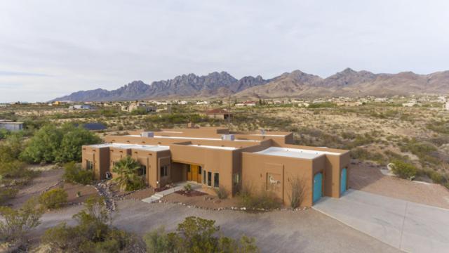 5095 Cueva Mine Trail, Las Cruces, NM 88011 (MLS #1805929) :: Steinborn & Associates Real Estate