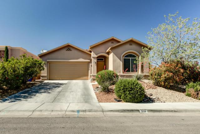 3531 Luz Bonita Lane, Las Cruces, NM 88012 (MLS #1805943) :: Steinborn & Associates Real Estate