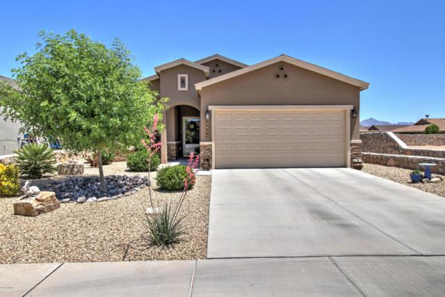 7572 Concho Place, Las Cruces, NM 88012 (MLS #1806019) :: Steinborn & Associates Real Estate