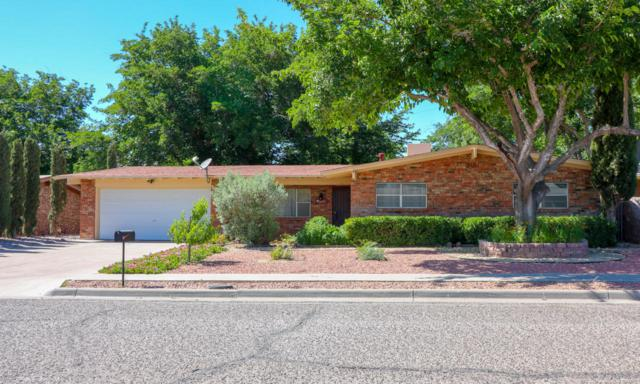1005 Ferndale Drive, Las Cruces, NM 88005 (MLS #1806037) :: Steinborn & Associates Real Estate